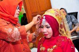 Resepsi Pernikahan (19)