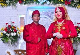 Resepsi Pernikahan (24)