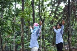 Jasa Foto Prewedding Murah (15)